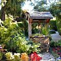 Garden Wishing Well by Elaine Plesser