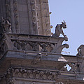 Gargoyles At Notre Dame Cathedral by Jon Berghoff