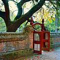 Gate In Brick Wall by Jill Battaglia
