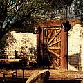 Gate To Cowboy Heaven In Old Tuscon Az by Susanne Van Hulst
