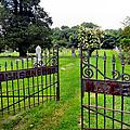 Gates Of Heaven by Art Dingo