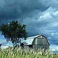 Gathering Storm by Joe Jake Pratt