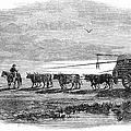 Gauchos, 1858 by Granger