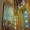 Gaudi's Vision by Christine Burdine