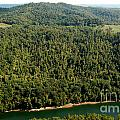 Gauley River Aerial View by Thomas R Fletcher