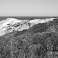 Gay Head Lighthouse With Aquinna Beach Cliffs - Black And White by Carol Groenen