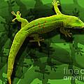Gecko-gecko-gecko by Anne Ferguson