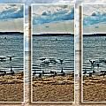 Geese Point Landing Triptych by Michael Frank Jr