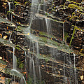 Gentle Waterfall In Glacier National Park by Bruce Gourley