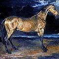 Gericault: Horse by Granger