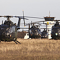 German Army Bo-105 Helicopters, Stendal by Timm Ziegenthaler
