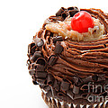 German Chocolate Cupcake 1 by Andee Design