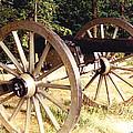 Gettysburg Cannon by Barbara Plattenburg