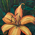 Gilded Lily by Judith Koppes