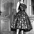 Gina Lollobrigida, 1950s by Everett