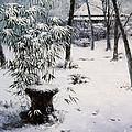 Gioji Temple In Snowing by Isao Ito