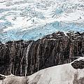 Glacial Edge Waterfall by Mike Reid