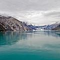 Glacier Bay National Park by Bill Lindsay