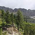 Glacier Nat Park by Amara Roberts