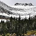 Glacier Park Bowlrock by Susan Kinney