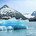 Glacier Remnants by Chuck Kuhn