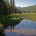 Glacier Slough Swan River Montana