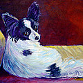 Glamor - Papillon Dog by Lyn Cook