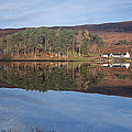 Glen Affric Reflections by Howard Kennedy