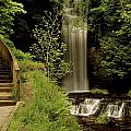 Glencar Waterfall, County Leitrim by Richard Cummins