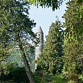 Glendalaugh Round Tower 11 by Douglas Barnett