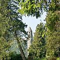 Glendalaugh Round Tower 12 by Douglas Barnett
