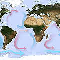 Global Ocean Currents by Karsten Schneider