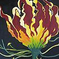 Gloriosa Lily by Berta Barocio-Sullivan