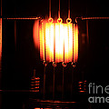 Glowing Filament 3 Of 3 by Ted Kinsman