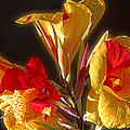 Glowing Iris by DigiArt Diaries by Vicky B Fuller