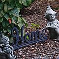 Gnomes At Home by Douglas Barnett