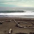 Goat Rock Beach by Cyndi Combs