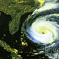 Goes 8 Satellite Image Of Hurricane Fran by Science Source
