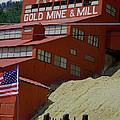Gold In Them Thar Hills by Judy Hall-Folde