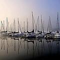Gold N Blue Sailboats Too by Randall Branham