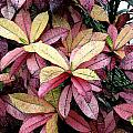 Gold Red And Purple Leaves by Lorelei Bolger