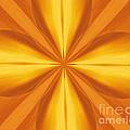 Golden 4 Leaf Clover  by Donna Brown