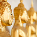 Golden Buddha Statue by Fred Froese