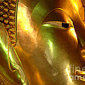 Golden Face Of Buddha by Bob Christopher