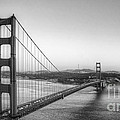 Golden Gate Black And White by Jim And Emily Bush
