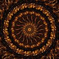Golden Mandala 1 by Rhonda Barrett