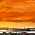 Golden Morning Over Humboldt Bay by Greg Nyquist