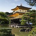 Golden Pavilion, A Buddhist Temple by Keith Levit