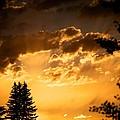 Golden Sky by Kevin Bone