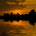 Golden Sunrise by Cindy Haggerty